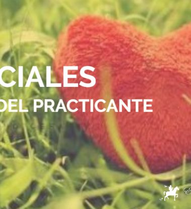 Artes Marciales: Brújula del Practicante