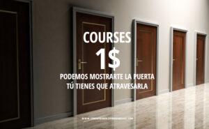 El camino del Guerrero x 1$